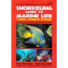 Snorkelling Guide to Marine Life Paul Humann & Ned DeLoach