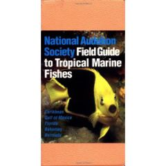 Audubon Field Guide To Tropical Marine Fishes C. Lavett Smith