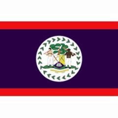 Belize Flag 30 cm x 45 cm