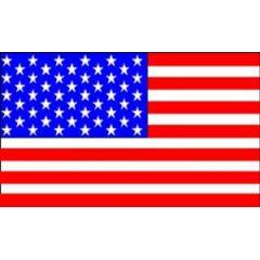 American Flag 30 cm x 45 cm
