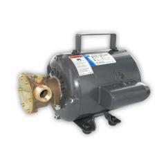 Jabsco AC Utility Pump Bronze 115V