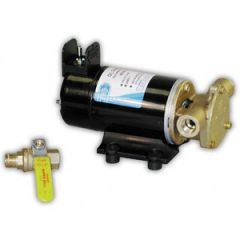 Oil Change Pump 12V